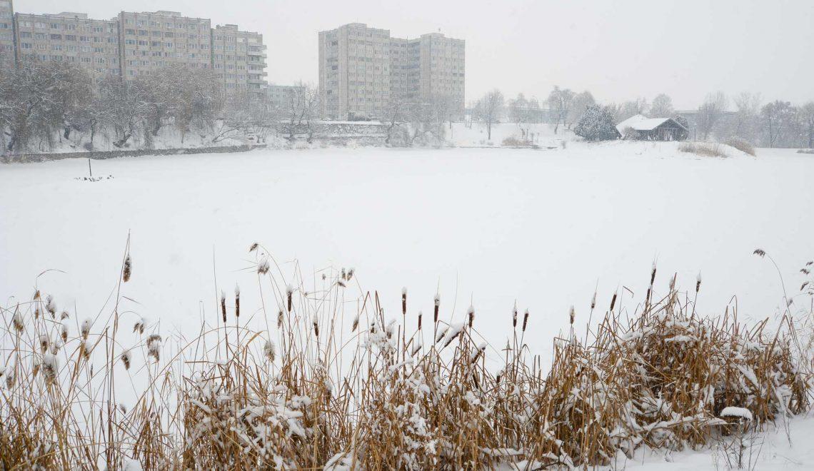 Márciusban pályáznak az Állomás negyedi tó felújítására